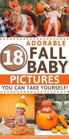 Fall Newborn Pictures, Halloween Baby Pictures, Fall Baby Pictures, Babys 1st Halloween, Photo Halloween, Fall Baby Pics, Baby Pumpkin Pictures, Babys First Pictures, Outside Baby Pictures