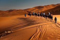 Desert by Оля Шатрова on 500px