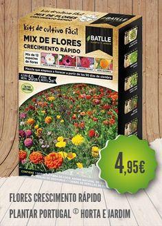 Flores Crescimento Rápido - O Kit fácil de Flores de Crescimento Rápido permite…