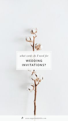 As a wedding stationery designer, I often get asked on how to relay information and collect data to make ...