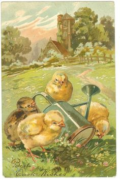 vintage Easter card, chicks with watering can