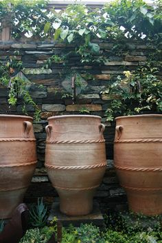 Row of fountain pots and faucets