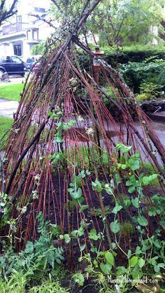 how to make a twig fort - Google Search