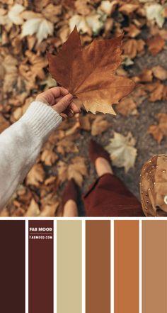 Fall Color Schemes, Color Schemes Colour Palettes, Fall Color Palette, Colour Pallette, Color Combos, Rustic Color Palettes, Vintage Colour Palette, Orange Color Palettes, Paint Color Schemes