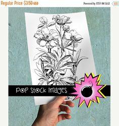 SALE: Digital Transfer Image - Vintage Peony Large Digital Transfer - Floral Peony Image  - Print Transfer Collage Sheet - Fabric Transfer -