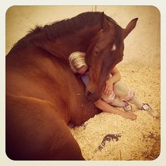 So cute.. That is a HUGE horse, though!