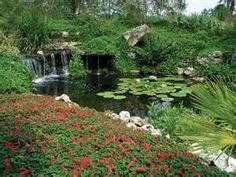 Gainesville Florida -
