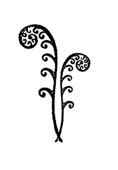 tatoo bracelet fern sprout - Pesquisa do Google