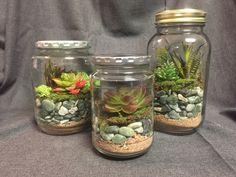 Sealed terrariums in mason jars All foe material fir under $20
