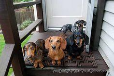 Yep - we are judging you.  =))