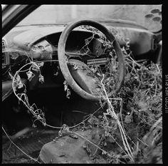 Varias - Photographies de Gérard Rondeau