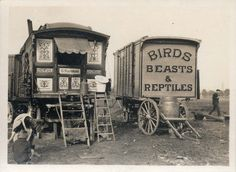 """Fans of HBO's short-lived period drama Carnivale will likely appreciate these vintage black and white gems that were recently unearthed by Retronaut. In the photos of UK circus caravans, we meet a variety of different subjects, from a """"Real Gypsy,… Old Circus, Night Circus, Circus Party, Circus Wedding, Circus Birthday, Birthday Parties, Dark Circus, Circus Theme, Vintage Carnival"""