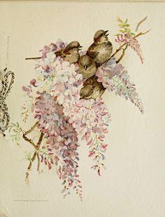 Vintage Ephemera: Birds and Lilacs 1887