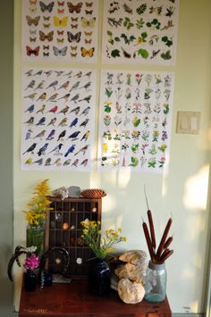 I endeavor to re-create a nature corner like this in our homeschooling room.