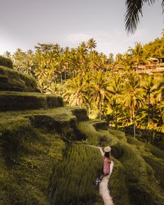 A travel Bali route guide. This Bali route will guide you on how to visit all the highlights and most beautiful locations on Bali. White River Rafting, Uluwatu Temple, Gili Island, Bali Travel, Top Of The World, Ubud, Amazing Destinations, Hot Springs, Beach Day