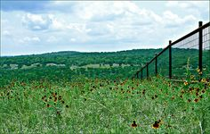 Hill Country View - Kerrville, TX