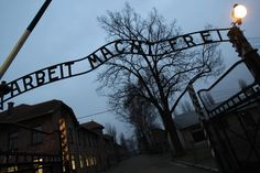 Only 54 Percent of People polled globally are 'Aware of the Holocaust' —  An alarming '32 percent' of them believe the Mass Genocide of Jews was a 'myth or has been greatly exaggerated' . a sweeping new survey has found . Anti-Semitism 'Infects' One in Four People . Global Survey Finds | NBC News