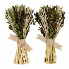 "Preserved myrtle and wheat with fox tail and a jute ribbon.    Product: Preserved floral arrangementConstruction Material: Twig, dried grasses, larkspur and burlapColor: Brown, green and beigeDimensions: 18"" H x 8"" Diameter eachCleaning and Care: Wipe with a dry cloth. Avoid direct sunlight."
