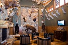 photo of 'Trophy Room' high walls displaying mounted hunting trophies surrounding seated area in front of fireplace