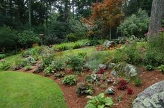 gardening on a slope pictures - Google Search