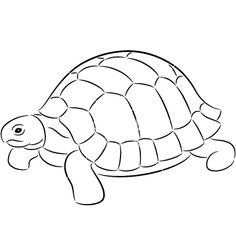 Tortoise on VectorStock - Before After DIY Tortoise Drawing, Tortoise Tattoo, Turtle Coloring Pages, Animal Coloring Pages, Animal Drawings, Art Drawings, Aluminum Foil Art, Turtle Quilt, Tortoise Color