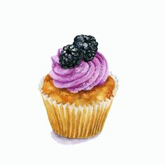 Blackberry Cupcake - ORIGINAL Painting (Desset Illustration, Still Life, Watercolour Food Wall Art)