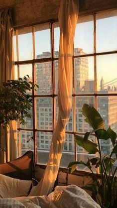 Travel Discover massive home windows! -massive home windows! -massive home windows! Aesthetic Iphone Wallpaper Aesthetic Wallpapers New Wall Aesthetic Rooms Sun Aesthetic Aesthetic Coffee Plant Aesthetic Aesthetic Grunge Quote Aesthetic Aesthetic Rooms, Aesthetic Photo, Aesthetic Pictures, Sun Aesthetic, Aesthetic Coffee, Aesthetic Grunge, Plant Aesthetic, Photography Aesthetic, Witch Aesthetic