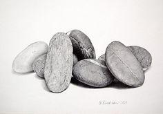 graphite drawings, colored pencil, stones, still-life, landscape | D. L. Friedman