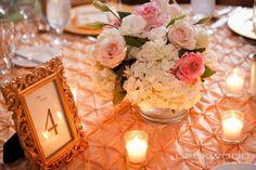 Google Image Result for http://kateryanlinens.com/plog-content/thumbs/event-gallery/event-gallery/large/4776-wedding-rachel-d-2.jpg