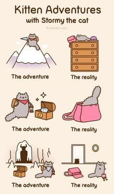 Pusheen's friend Stormy! (Follow link for animated version)
