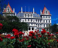 NY State Capitol Building-get updates at NY.gov on business, education, family, health, consumer info, career/ employment, licensing and recreation.