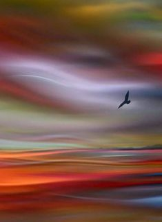 Sunset flight beautiful sunset, simply beautiful, beautiful world, beautiful places, amazing photography Nature Pictures, Beautiful Pictures, Beautiful Beautiful, Beautiful Sunset, Beautiful Places, Abstract Landscape, Abstract Art, Painting Techniques, Painting Inspiration