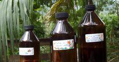 """Las Tinturas Madre son extractos curativos de hierbas hechos a partir de la maceración de las mismas en una """"solución alcóholica"""". Es un..."""
