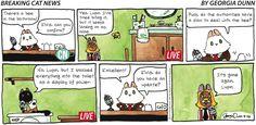Breaking Cat News by Georgia Dunn for Sep 10, 2017 | Read Comic Strips at GoComics.com
