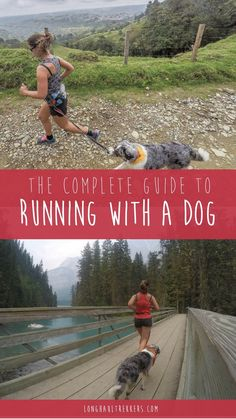 Running is a great way for both you and your pup to burn energy and get healthy. Here are some tips and gear recommendations for running with a dog. Running Plan, Trail Running, Running Guide, Running Buddies, Hiking Dogs, Dog Rooms, Pet Travel, Long Haul, Service Dogs