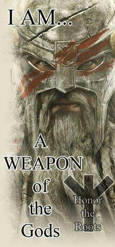 A Norse Warrior More