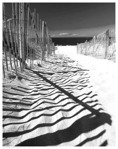 Paper: 14 1/2 x 11 1/2 Image: 14 x 11 Captivating art print poster of a sandy path to the beach flanked by two fences. The shadow cast on the sand is mesmerizing.