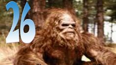 Sasquatch Chronicles SC EP:26 Witness Encounters With Bigfoot