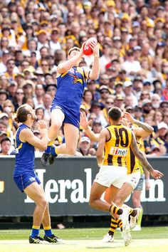 2015 Toyota AFL Grand Final - Hawthorn v West Coast - Jeremy McGovern of the Eagles marks the ball during the 2015 Toyota AFL Grand Final match between the Hawthorn Hawks and the West Coast Eagles at the Melbourne Cricket Ground, Melbourne, Australia on October 3, 2015. West Coast Eagles, Australian Football, Melbourne Australia, Hawks, Rugby, Cricket, Finals, Toyota, October