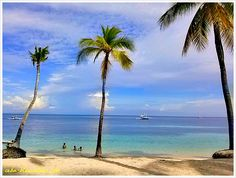Fine White Cebu Beaches is located in the Visayan Islands of central Philippines. These beaches are considered one of the best in the entire archipelago.