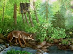Wildlife Murals Painting for Outdoor Walls