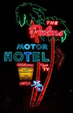 Colour Inspiration: Neon Signs | Fitzroy Boutique