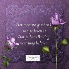 Geluk, Life Quotes, Music, Pink, Beautiful, Cards, Quotes About Life, Musica, Musik