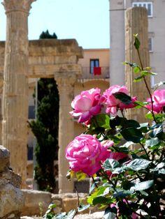 Un lugar privilegiado en Tarragona