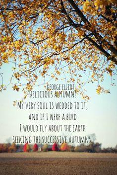 Delicious Autumn Quote George Elliot