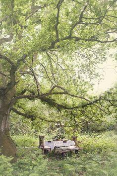 Cottingley Fairies Inspired Woodland Bride Photoshoot... - Love My Dress Wedding Blog / Dining outside / outdoors / al fresco / romantic / intimate