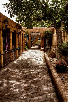 The Patio Market | Old Town | Albuquerque | NM | Photo By David Patterson