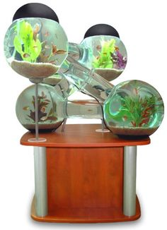 Labyrinth Aquarium Has Swimming Tubes: Science Fiction in the News