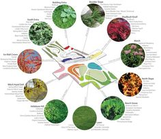 Microclimates and plant communities.