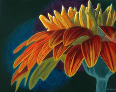 Amanda's Gerber Daisy 20 in. x 16 in. oil on canvas Painted for my daughter-in-law